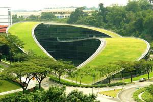 Scoala de arta din Singapore
