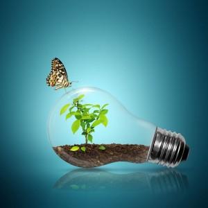 energie verde regenerabila