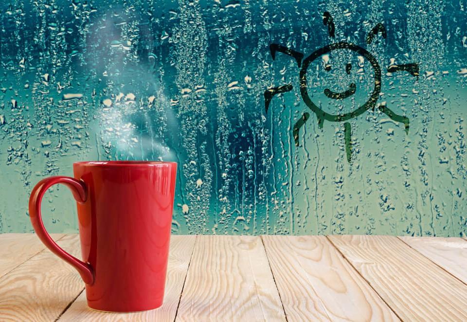 controlul umiditatii casei tale